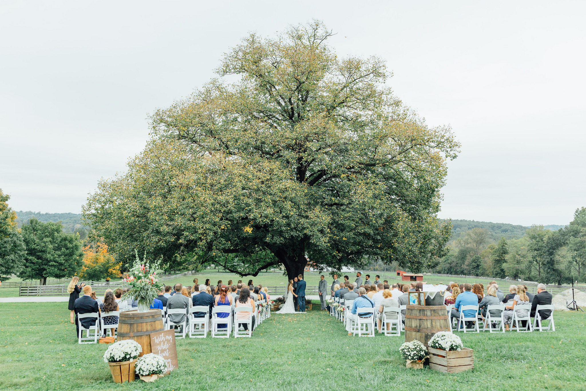 Outdoor Wedding ceremony a the linden tree at SMF